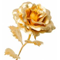 Роза  GL-RO-001