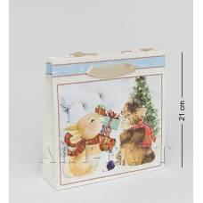 WAC-02-10 Бумажный пакет