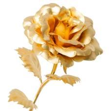 GL-RO-001 Роза