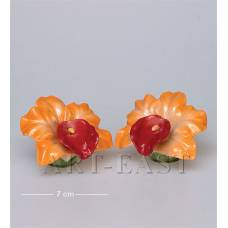 "CMS-05/ 3 Набор соль-перец ""Орхидеи"" (Pavone)"