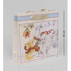 WAC-01-10 Бумажный пакет