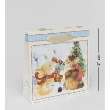 WAC-02-10 Паперовий пакет